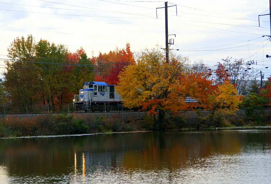 Wilmington, Delaware in the fall