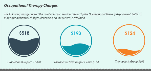 occupational-therapy-chrges