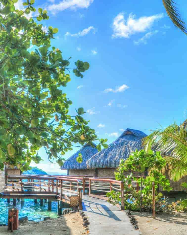 about french polynesia